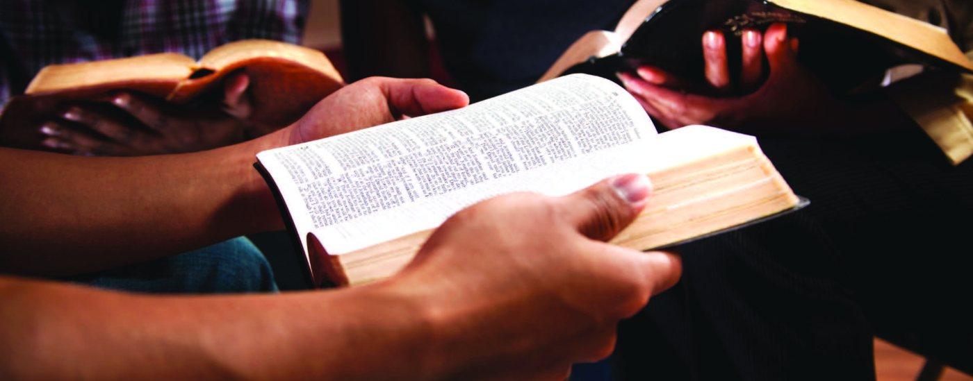 Cận cảnh tay của hai người, mỗi người cầm một quyển Kinh thánh.