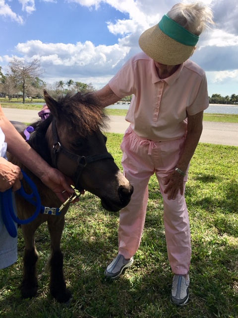 A patient pets a therapy pony