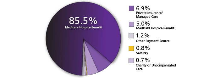 A pie chart showing who pays for hospice