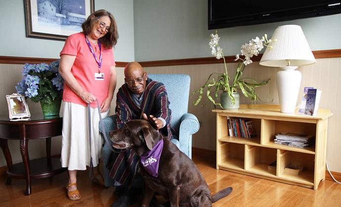 Một bệnh nhân xoa đầu một chú chó tình nguyện Paw Pals
