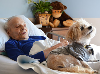 A VITAS patient with a Paw Pal volunteer dog